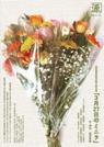 20090502_minira.jpg