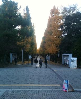 20111204_songha4.JPG