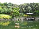 20050729 akaitori yusuzumi-kai.jpg