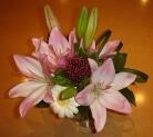 20051106 flowers.JPG